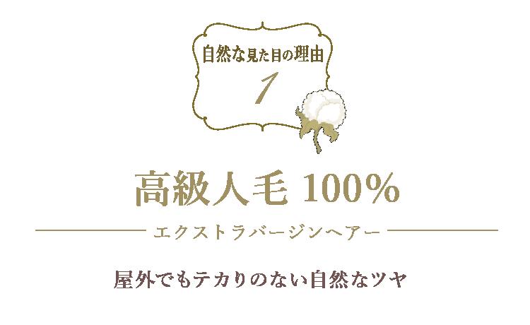 【自然な見た目の理由1・高級人毛100%使用でテカリのないツヤ